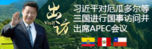 习近平对厄瓜多尔、秘鲁、智利进行国事访问并出席APEC第二十四次领导人非正式会议