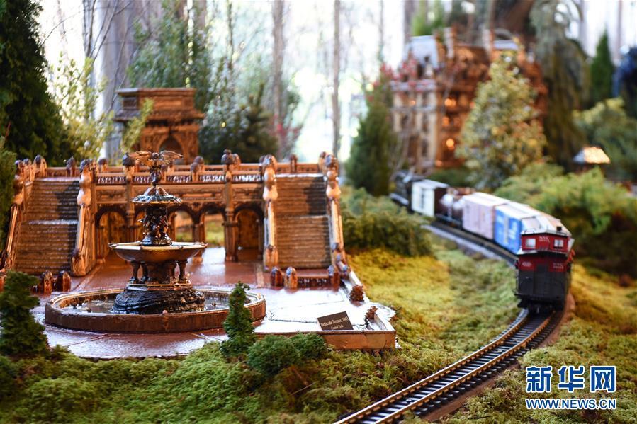 11月26日,在美国纽约植物园节日小火车展上,一辆模型小火车驶过纽约中央公园贝塞斯达喷泉和台阶微缩模型。 新华社记者 韩芳 摄