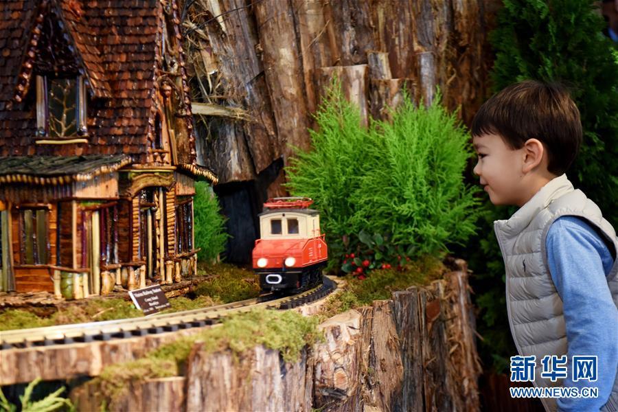 11月26日,在美国纽约植物园节日小火车展上,一名儿童观察一辆模型小火车。 新华社记者 韩芳 摄