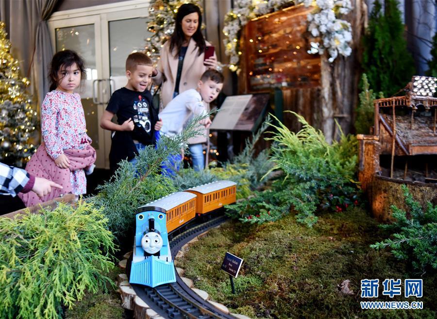 11月26日,在美国纽约植物园节日小火车展上,儿童观看托马斯模型小火车。 新华社记者 韩芳 摄