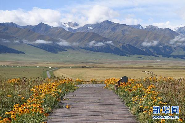 这是9月7日拍摄的那拉提景区风光。 那拉提景区位于新疆新源县境内,三面环山,巩乃斯河蜿蜒流过,保留着浓郁的民俗风情和丰富的草原文化。 新华社记者 沙达提 摄