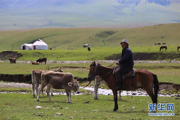 这是9月7日在那拉提景区拍摄的牧民。 那拉提景区位于新疆新源县境内,三面环山,巩乃斯河蜿蜒流过,保留着浓郁的民俗风情和丰富的草原文化。 新华社记者 安希雅 摄