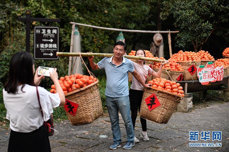 """10月3日,游客在西溪国家湿地公园挑起道具""""柿子""""留影。据了解,西溪湿地内共有柿子树7000多棵,正值丰收的季节。 当日是国庆假期第三天,大批游客来到位于杭州的西溪国家湿地公园游玩,在江南诗意的环境中休闲度假。 新华社记者 黄宗治 摄"""