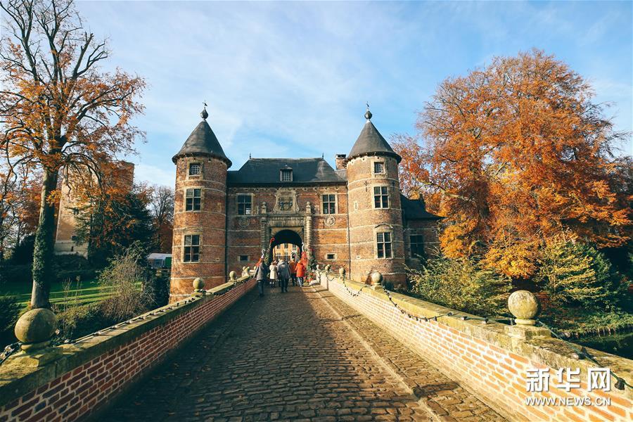 11月22日,游客在比利时布鲁塞尔西郊的拜加登城堡欣赏秋景。新华社记者 张铖 摄