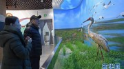 鄱阳湖湿地和候鸟宣教中心向公众开放