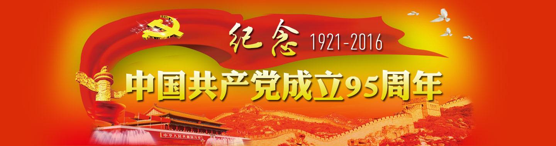 建党95周年