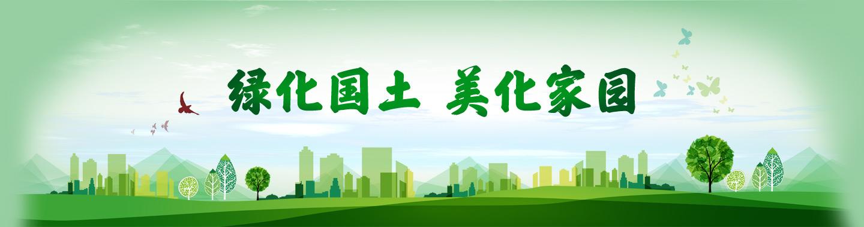 绿化国土 美化家园