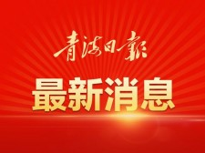 16个小时!Manbetx苹果版下载人可坐动卧去上海啦
