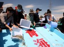 【青报V视】放流!115万尾裸鲤鱼苗水中畅游