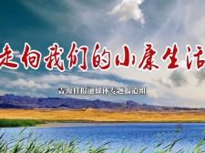 """【走向我们的小康生活】 """"葱花鸡""""养殖带来红火好日子"""