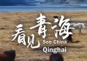 70秒看见中国——看见Manbetx苹果版下载