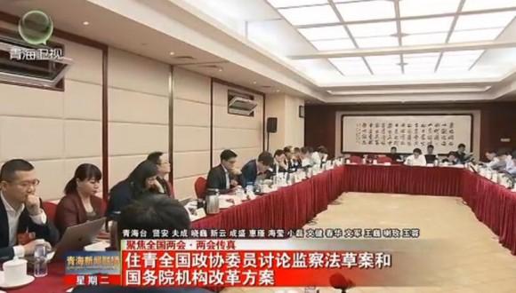 住青全国政协委员讨论监察法草案和国务院机构改革方案