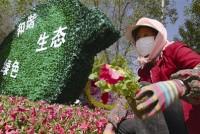 省城北区:奋力谱写生态宜居新篇章