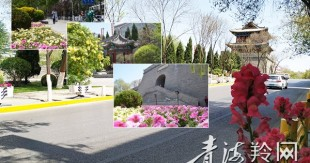 市民点赞:省城处处是美景