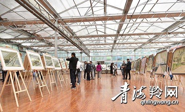 首届美术作品展在西宁市人民公园林宗书院展出