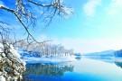 水墨丹青莲花湖