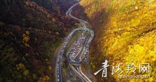 国庆假期 Manbetx苹果版下载秋景刷屏朋友圈