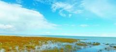Manbetx苹果版下载湖:不一样的季节,不一样的美
