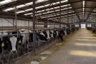 科技, 正在点燃生态畜牧业发展之光