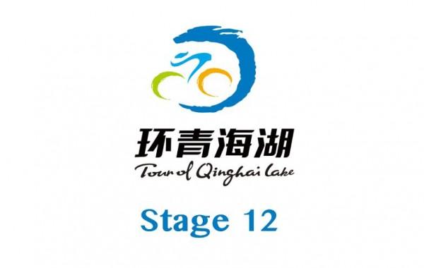 第12赛段:银川绕圈赛