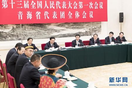我省代表团审议全国人大常委会工作报告 王沪宁与代表共同审议