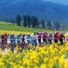 第15届环青海湖国际公路自行车赛7月底转场白银