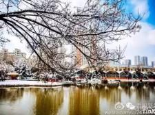 早上大雪纷飞,中午艳阳高照…西宁天气你咋不上天呢?