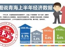 青海省上半年GDP增速高于全国,怎样看待这8.3%?