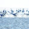 2100余只大天鹅在青海湖过冬