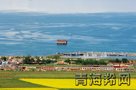 在全省各族人民的奋力拼搏下,大美青海将更加美丽