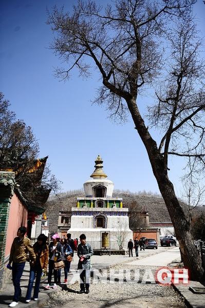 ...塔尔寺是青海省王牌旅游景点之一,寺院有绚丽多彩的壁画、堆...