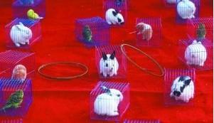 北京陶然亭庙会_青羚网-北京庙会套兔被指虐待动物